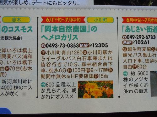 9ページ「沿線イベントカレンダー」左下