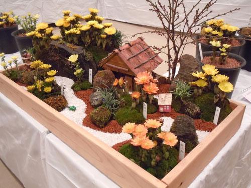 野辺勇氏出品の箱庭風に作られた盆景