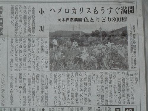 6月26日 埼玉新聞より