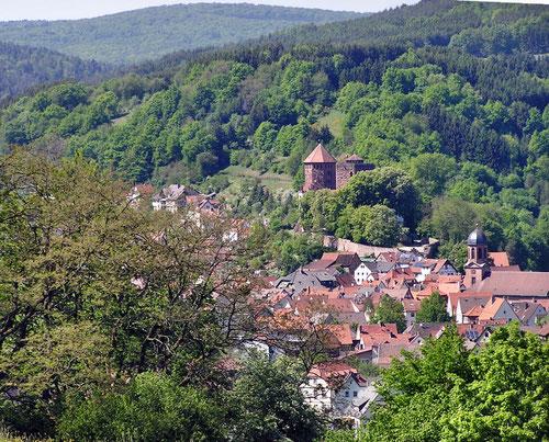 Rieneck mit Burg Rieneck