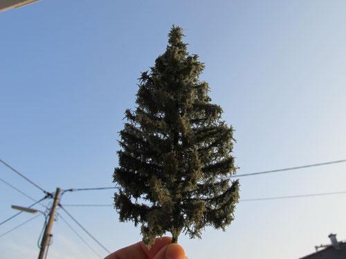 Bäume - bei Interesse auf Bild klicken