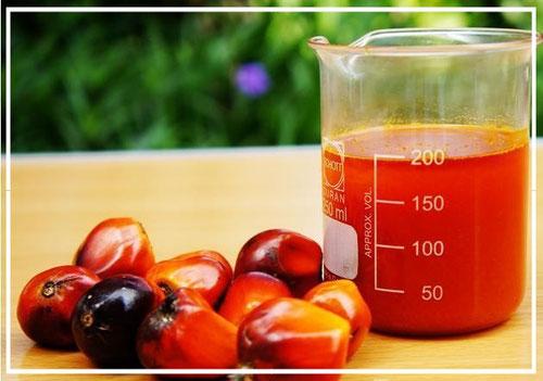 Пальмовое масло опасно