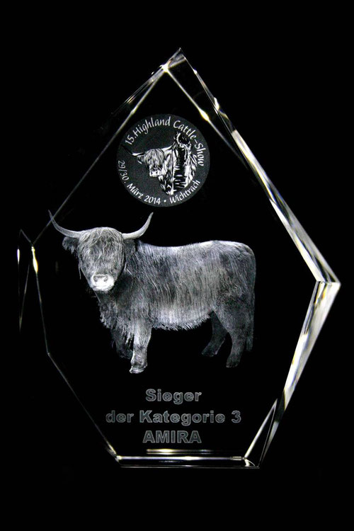 Highland Cattle-Show 2014 Swiss 3D Glas Show Pokal