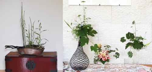 ●玄関のお花(左)/トクサ、パセリノハナ、シロバナニゲラ、シマアシ、コバンソウ       ●リビングの花(右)/アスパラ、  ブドウ、パセリノハナ、ダリア、 シロバナニゲラ、     ブルースター、チコリノハナ、ミニギボウシ