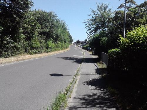Km 10: Nach dem Busfahren wird's trist. Der Weg nach Kücknitz.