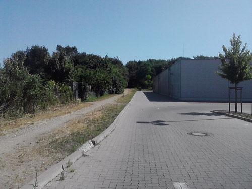Km 2: Nach einem kleinen Stück Straße geht's hier weiter Richtung Wesloer Forst.