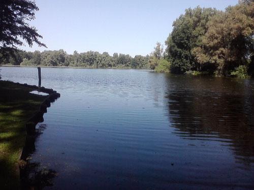 Km 1: Es geht am Wasser los, an der Wakenitz und meiner Haus-und-Hofrunde.