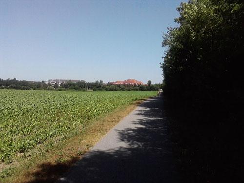 Km 17: Nun will ich auch ans Ziel. Es geht hinunter nach Travemünde.