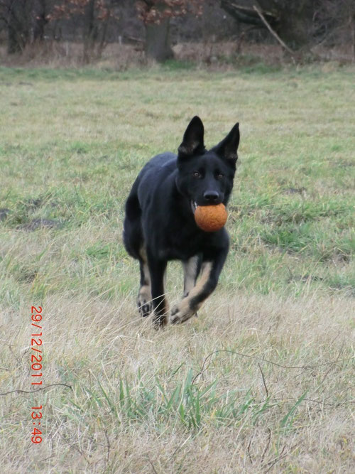 beim Ball spielen