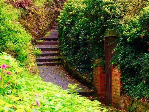 der Wanderweg hinauf zur Burg führt durch wundervolle Gärten