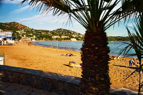 wunderschöne Badebuchten nahe Cannes