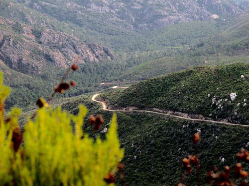die kurvenreiche Strasse hinunter nach Moca-Croce