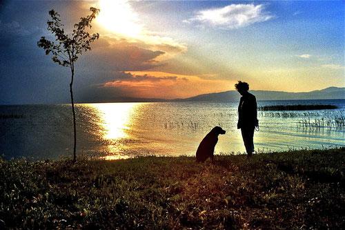 wir standen am Ufer des Iznik-See´ - stimmungsvoll der Sonnenuntergang