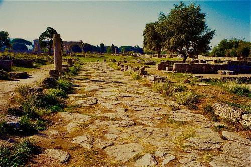 die original-Zuweg zu den Tempeln von Paestum