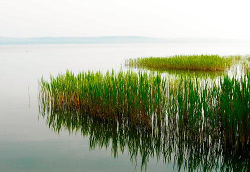 am nächsten Morgen lag der Balatony-See still und unberührt vor uns uns