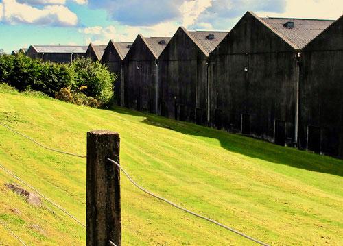 sechs riesige Hallen gehören zu der Dundee-Brennerei