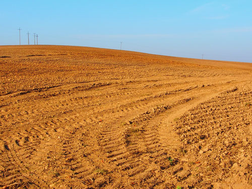 die Bebauung der endlosen Felder perfekt organisiert
