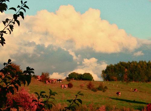 bauschige Wolken-Formationen gaben dem Abendhimmel ein Gesicht