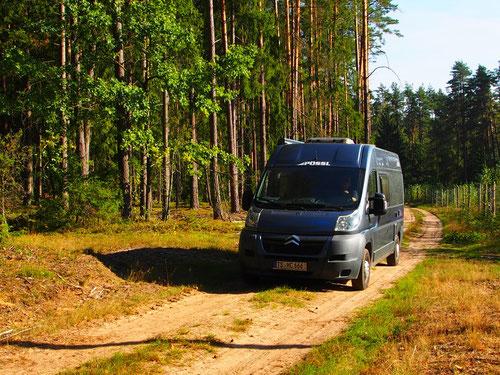 25 km fuhren wir auf dieser einsamen Waldstrasse, ohne Orientierung, nur nach der Sonne ausgerichtet