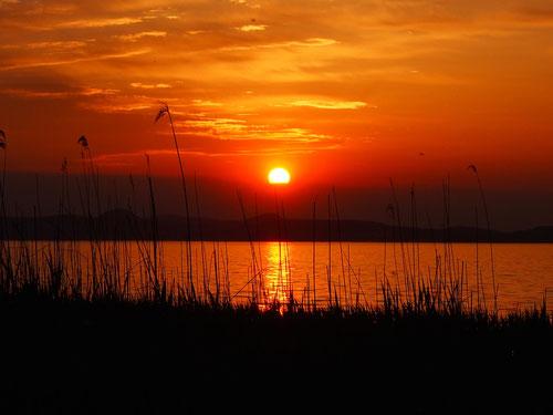geheimnisvoll - der Sonnenuntergang in Balatonelle