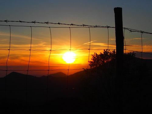 die Sonne verabschiedete wie jeden Tag, dominant und allmächtig