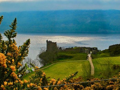 eine der beliebtesten Sehenswürdigkeiten am Loch Ness das Urquardt Castle