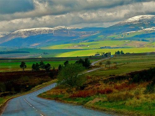 die Highlands - eine faszinierrtende Landschafts-Symphnonie in grün
