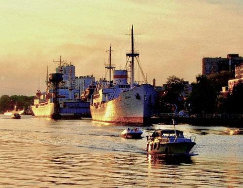 aktuelles Bild von Königsberg an der Pregel
