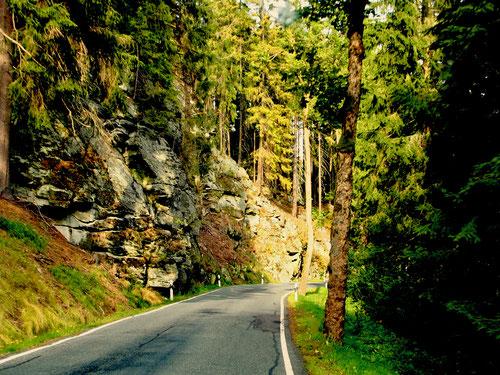 die Natur-Schutzgebiete im Erzgebirge, eingerahmt von kleinen Fluss-Läufen
