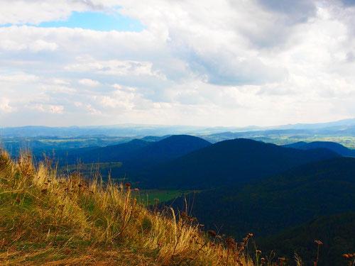 40 Vulkan-Kegel in einer Reihe - ein imposanter Ausblick