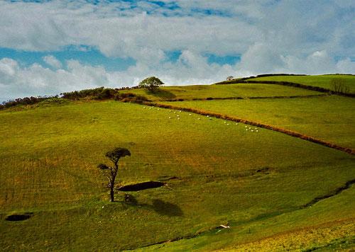 wundervoll die Landschaften im Dartmoor National Park