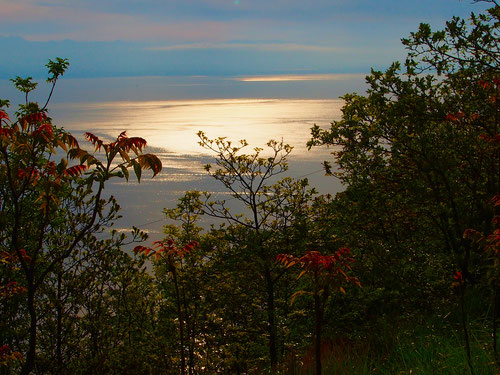 die milchige Morgensonne kündigte einen Wetterwechsel an