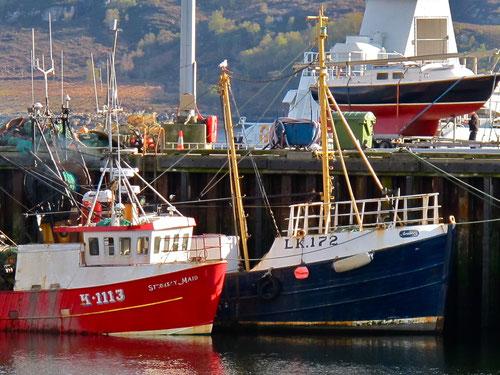 im schottischen Hochsommer fahren die Fischer die Touristen zum Loch Broom hinaus