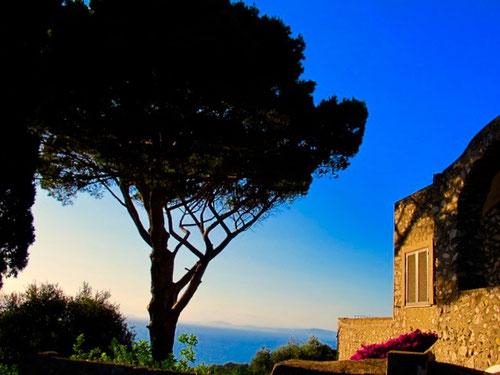 grandios der Blick hinüber nach Ischia