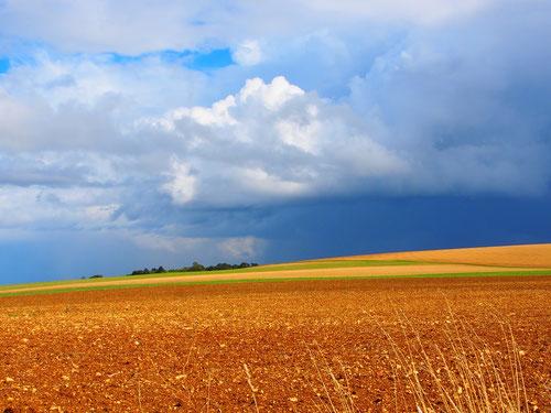 die unendlich scheinenden Getreide-Felder waren schon abgeerntet