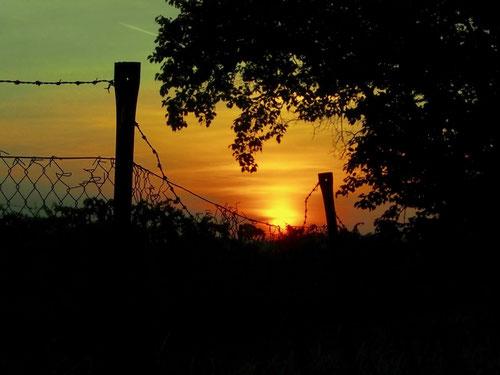 zzweiter Stellplatz, mit einem herrlichen Sonnenuntergang
