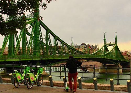 die berühmte, grüne Kettenbrücke über die Donau