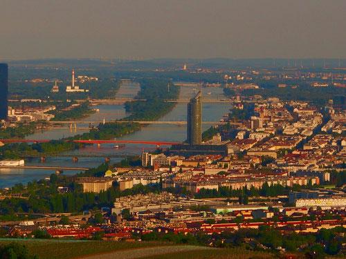 Panorama-Aussicht auf die Donau und auf die Stadt Wien