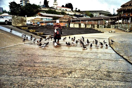 eine alte Frau mit ihren vielen Tauben