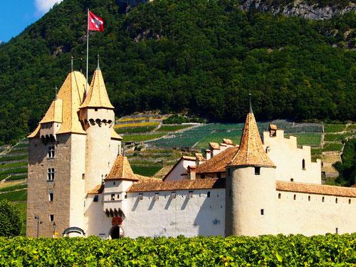 das Schloss Roche umgeben von üppigen Weinbergen