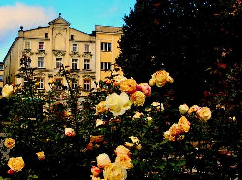 Carlsberg am Rande des Naturparks wüsncht sich viele Besucher