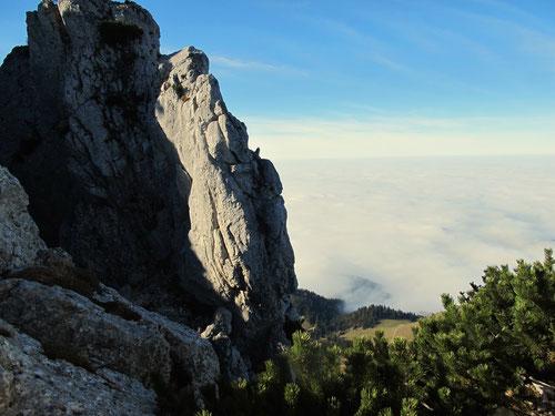 der Blick hinunter - auf ein endloses, weites Nebel-Meer