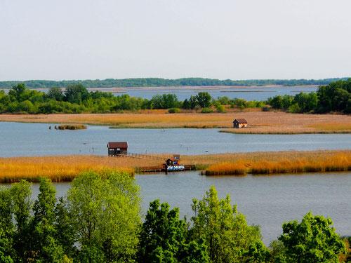 der Theiss-See - vom Turm des Ökozentrum Poroszlö aus - betrachtet