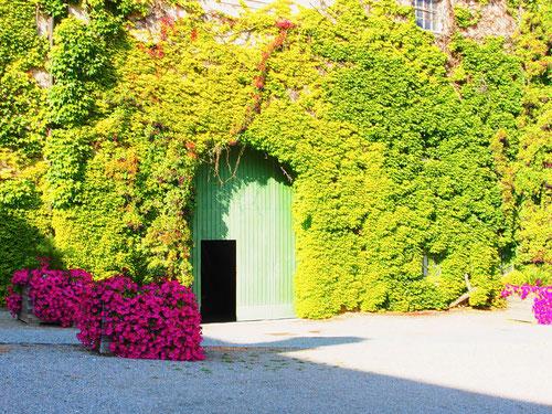 herrliches Wand-Dekor mit offener Türe