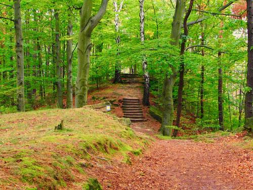 interessant die Wanderung auf dem Schandauer Schlossberg