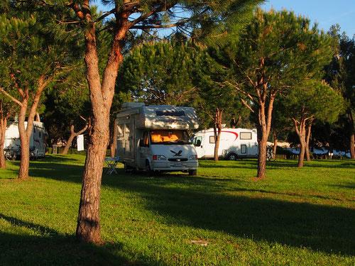 in der Hauptsaison beherbergt dieser Platz über 1500 Camper