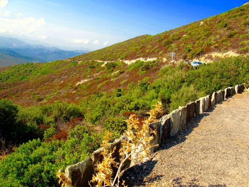 eine gut ausgebaute Panorama-Strasse führte die Westküste entlang