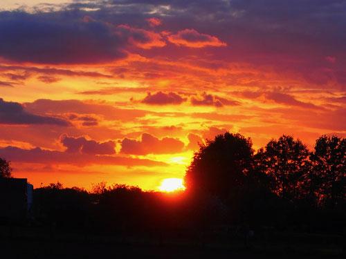 immer wenn die Sonne sich glühend verabschiedet, beginnen unsere Herzen zu vibrieren