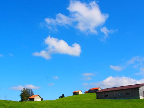 der Himmel und die Wiesen passe hier zusammen