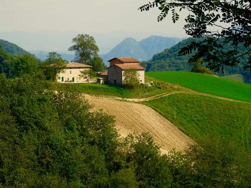 die Bauerhäuser eingebettet in eine schwer zu bearbeitende Landschaft